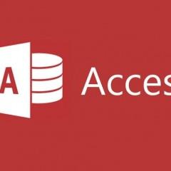 Experto en Microsoft Access 2016