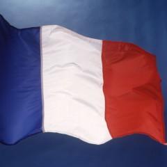 Máster Executive en Francés Profesional (Nivel Oficial Consejo Europeo C1)