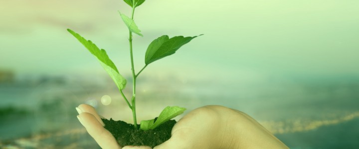 Curso gratis Técnico Profesional en Evaluación de Impacto Ambiental online para trabajadores y empresas