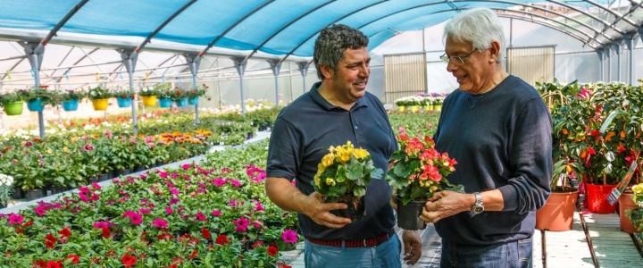 Curso gratis Actividades Auxiliares en Viveros, Jardines y Centros de Jardinería online para trabajadores y empresas