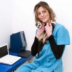 Especialista en Urgencias Veterinarias y Quirófanos