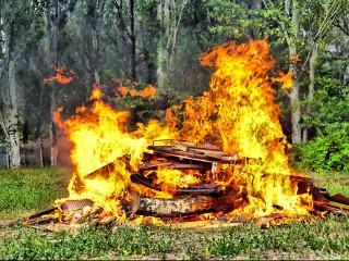 UF2361 Operaciones Básicas de Vigilancia y Detección de Incendios Forestales. Revisión y Mantenimiento de Infraestructuras de Prevención e Instalaciones de Extinción y Divulgación a la Población de Medidas Preventivas