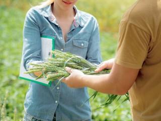 MF1130_3 Organización y Control de las Operaciones de Cultivo