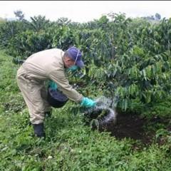 UF0385 Programación y Control del Riego y la Fertilización de los Cultivos