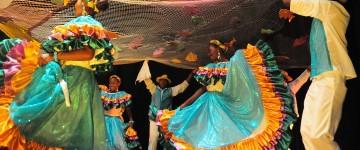 Experto en Educación Musical e Interculturalidad