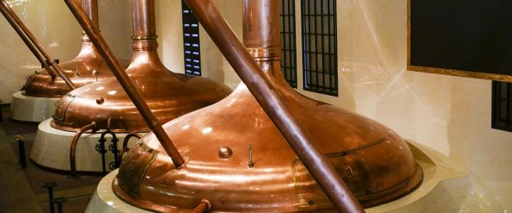 Curso gratis MF0313_2 Fermentación, Maduración y Acabado de la Cerveza online para trabajadores y empresas