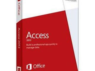 Experto en Microsoft Access 2013