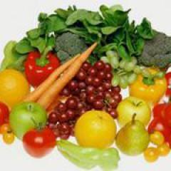 Experto en seguridad alimentaria