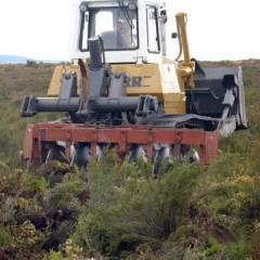 AGAR0109 Gestión de Repoblaciones Forestales y de Tratamientos Silvícolas