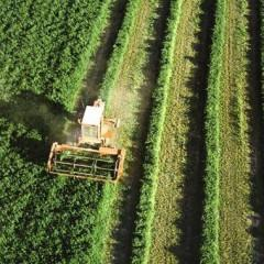 AGAU0108 Agricultura Ecológica