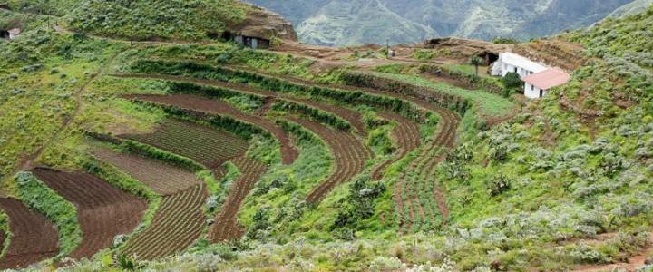 Curso gratis Agente de Desarrollo Rural online para trabajadores y empresas