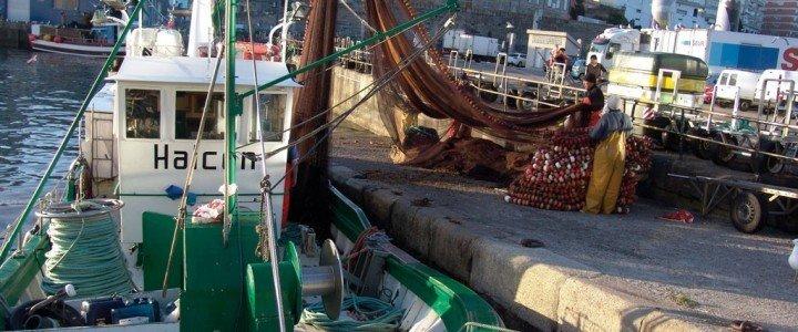 Marítimo Pesquera
