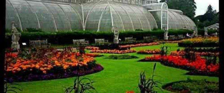 Mantenimiento y manejo de invernaderos. AGAH0108 - Horticultura y floricultura