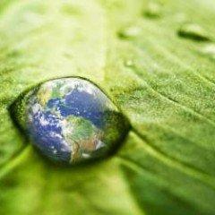 Máster en Medio Ambiente y Gestión Sostenible