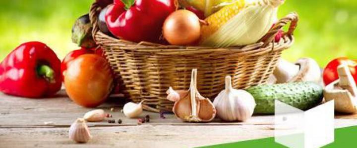 Norma IFS de Seguridad Alimentaria (International Food Standar) v.6