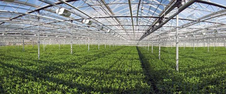Operaciones básicas en viveros y centros de jardinería. AGAO0108 - Actividades auxiliares en viveros, jardines y centros de jardinería