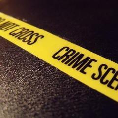 Perito Judicial en Criminología