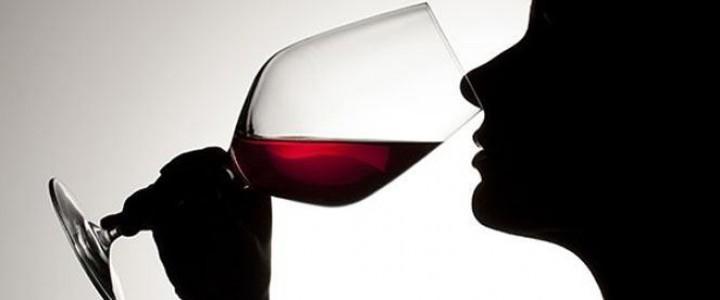 Cata de vino-maridaje-sumiller