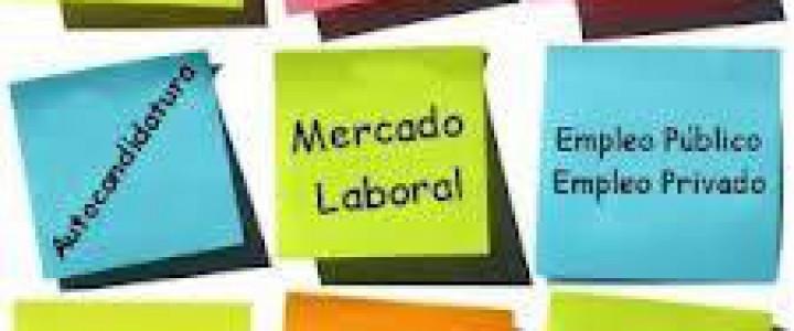 Programa Superior de Certificación Profesional en Orientación Laboral