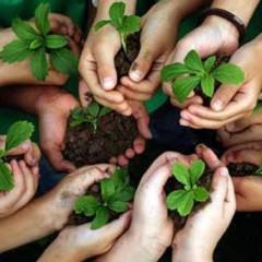 Técnico en Educación Ambiental