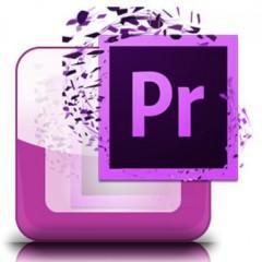 Técnico Profesional en Montaje y Edición de Video con Adobe Premiere CC 2015: Editor Profesional de Video