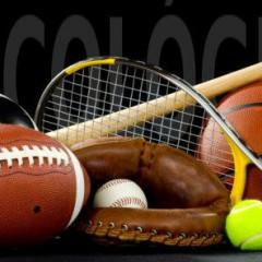 Técnico Profesional en Psicología del Deporte