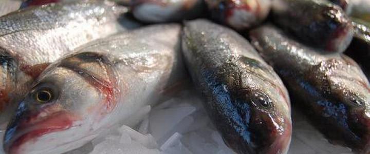 UF0064 Preelaboración y Conservación de Pescados, Crustáceos y Moluscos