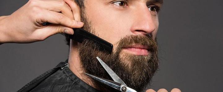 UF0535 Cuidado de Barba y Bigote