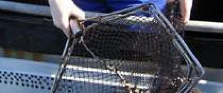 UF1387 Planificación de la Prevención en los Procesos de Engorde de Especies Acuícolas