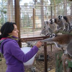 Cuidador de Parques Zoológicos