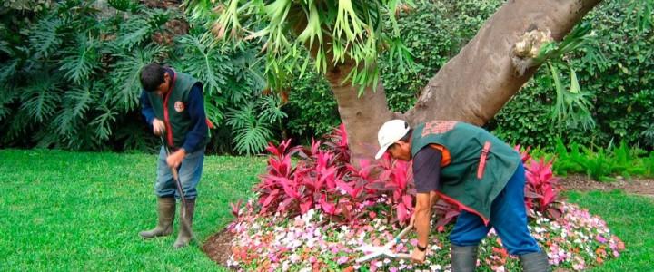 UF1597 Manejo de Instalaciones y Expedición de Plantas de Vivero