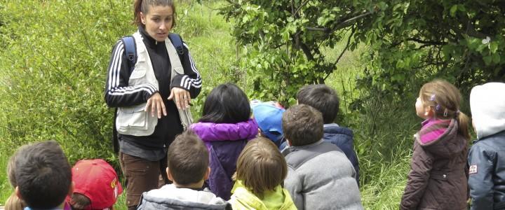 UF0740 Ejecución de Programas y Actividades de Educación Ambiental