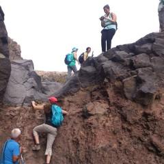 AFDA0611 Guía por Itinerarios de Baja y Media Montaña