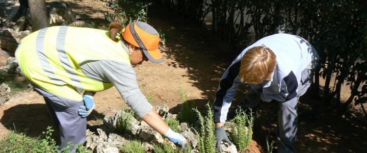AGAO0308 Jardinería y Restauración del Paisaje