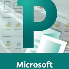 Curso Superior de Microsoft Publisher 2010