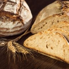 Manipulador de Alimentos. Panaderias