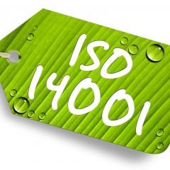 Curso Online de Auditor de Sistemas de Gestión Ambiental: ISO 14001