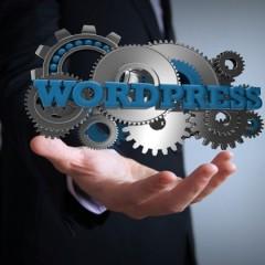 Curso Online de Creación de Webs 2.0 con Wordpress: Práctico