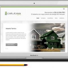 Técnico Profesional en Diseño Web Avanzado con CSS3