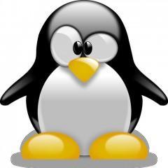 Curso Superior Linux. Nivel Avanzado