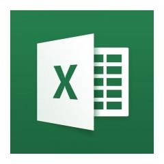 Experto en Microsoft Excel 2013, VBA, Business Intelligence, KPI, DAX y Cuadros de Mando
