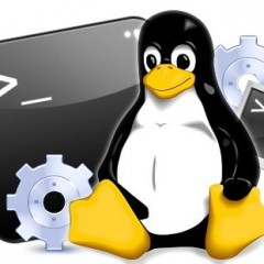 Especialista TIC en Linux Básico + Linux Avanzado