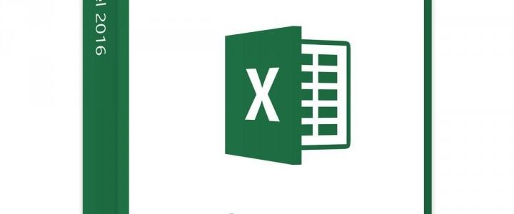 Experto en Microsoft Excel 2016
