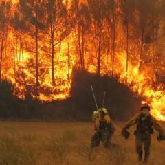 MF1965_2 Extinción de Incendios Forestales
