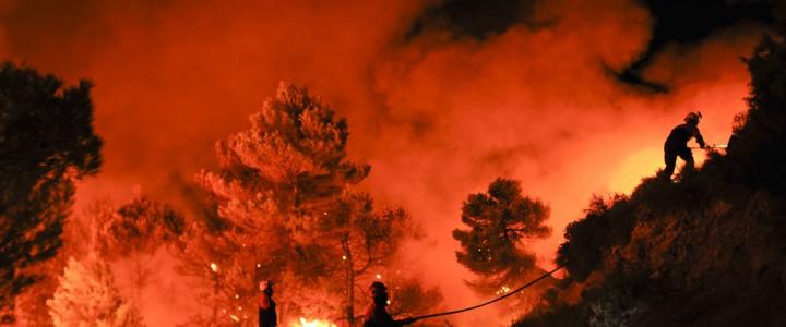 Técnico Profesional en Investigación de las Causas de Incendios Forestales