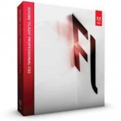 Especialista TIC en Diseño con Adobe Flash CS5