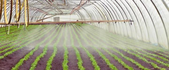 Valoraciones de Instalaciones Agrarias Básico