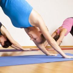 AFDA0311 Instrucción en Yoga