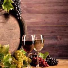 INAH0109 Elaboración de Vinos y Licores