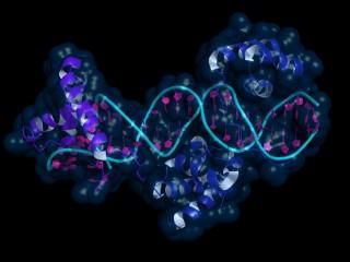 biologia molecular y citogenetica altamar pdf gratis